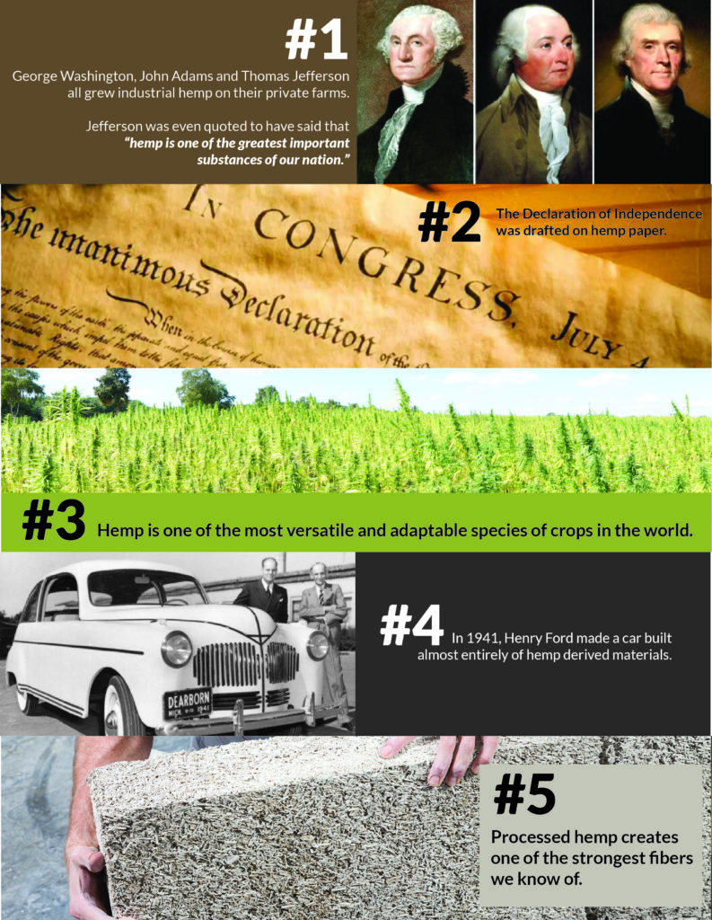 Five Fun Facts About Hemp Infographic
