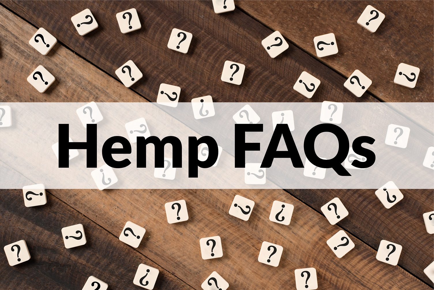 Hemp FAQs header with question mark tiles in the background